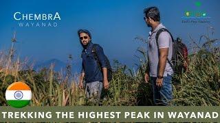 Trekking the highest peak - Chembra peak Wayanad Kerala 4K video