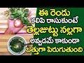 తెల్లజుట్టు నల్లగా అవ్వాలంటే..? I Hair Growth Tips in Telugu I Health Tips  I Everything in Telugu