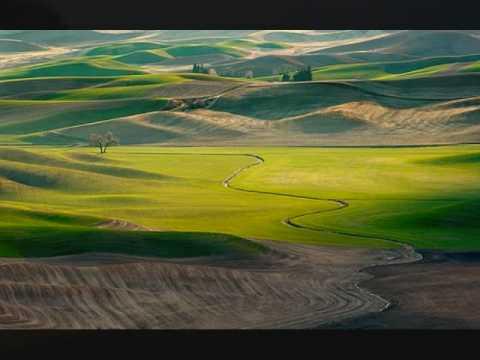 Yusuf Islam - Green Fields, Golden Sands