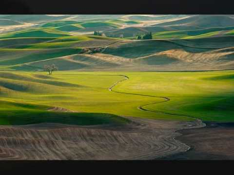 Cat Stevens - Green Fields, Golden Sands