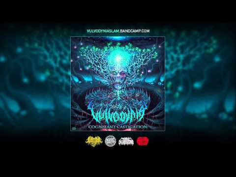 Vulvodynia - Cognizant Castigation [FULL ALBUM STREAM] thumbnail