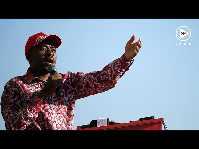 5 things you didn't know about Nelson Chamisa