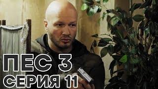 Сериал ПЕС - все серии - 3 сезон - 11 серия - смотреть онлайн