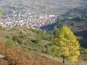 Devrek Karadeniz incisi Zonguldagin Gözbebegi