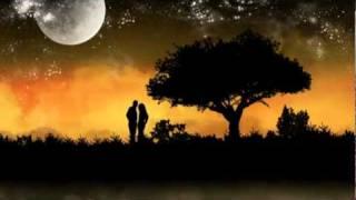 Take me to your heart(Harmonica) - SuperKat