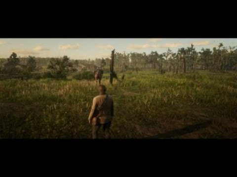 ИЗНАСИЛОВАЛИ В Red Dead Redemption 2  (((