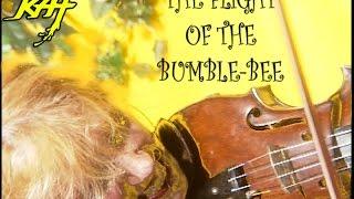 Watch Great Kat Flight Of The Bumblebee video