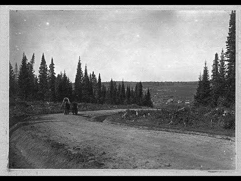 Освоение пустующих территорий Сибири в 1900 годах.