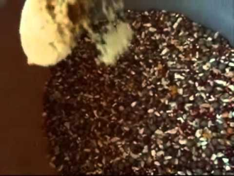 PIGEON MIX - RACE BIRDS.wmv