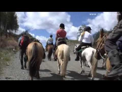 Mongolia Horseback Riding Tours And Horse Riding Holidays In Mongolia