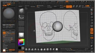 Introduction to ZBrush for Scientific Visualization - Chap7 Importing Reference Images