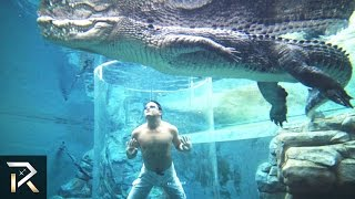 10 Most Insane Swimming Pools You Need To See To Believe!