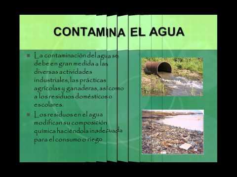 Reciclaje para proteccion del medio ambiente