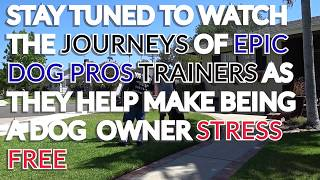 Meet Arturo A Top Trainer At EPIC DOG PROS Watch Him Train Dogs on www.EpicDogPros.TV