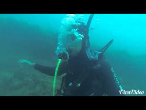 Plongée sous marine Algerie Tipaza / Scubadiving in Algeria Tipaza (padi)