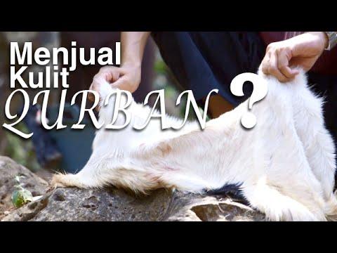 Serial Fikih Islam 2 - Episode 16: Kulit Qurban Bukan Untuk Dijual - Ustadz Abduh Tuasikal