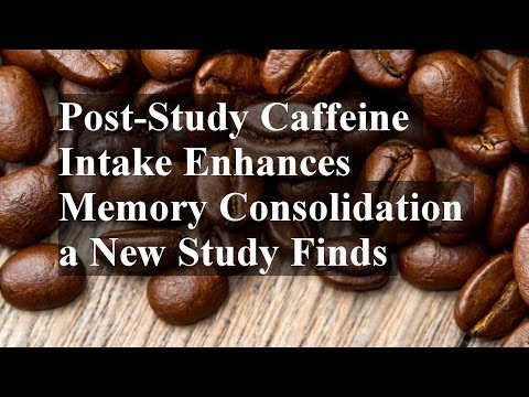 Post-Study Caffeine Intake Enhances Memory Consolidation a New Study Finds