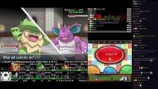 Twitch Plays Pokémon Randomized Y - Hour 240 to 241