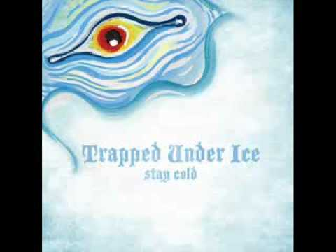 Trapped Under Ice - Skeleton Heads