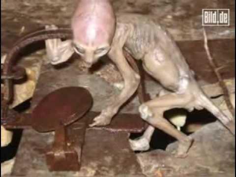 墨西哥農場工人淹死外星人影片曝光!