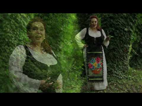 Elena Vasile Caline  - Asa nunta n-am vazut (official video ) 2017