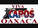 Los Capos de Mexico de El [video]