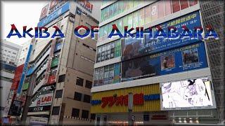 Akiba Of Akihabara ?Japan Vlog 19?