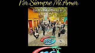 Banda Sinaloense Ms De Sergio Lizarraga Por Siempre Mi Amor