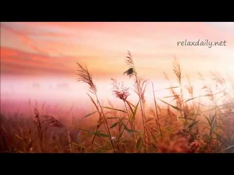 Download Background Music Instrumentals   relaxdaily   B Sides N°1