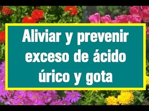 acido urico serico elevado alimentos que se debe evitar para gota como reducir el acido urico alto