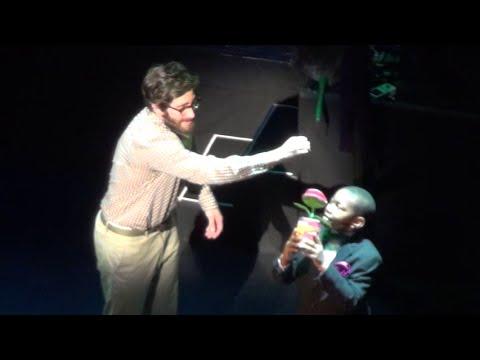 Grow for Me - Jake Gyllenhaal - Little Shop of Horrors - 2015 Encores! Off-Center