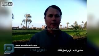 مصر العربية | مكامير الفحم .. فرص العمل القاتلة