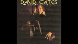 DAVID GATES (BREAD)_Never Let Her Go_2º ALBUM SOLO