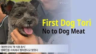 Blue House's First Dog Tori attends event opposing Korean dog meat trade
