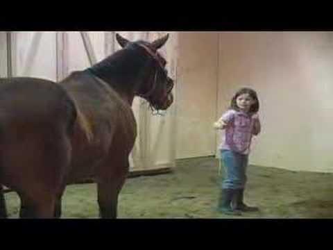 Kids & Horses