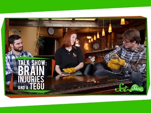 Talk Show: Brain Injuries & Pearl The Tegu video