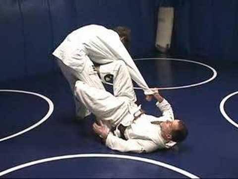 De La Riva Guard to Back Control Image 1
