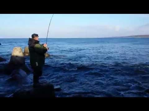 ловим кумжа  сверху финском заливе