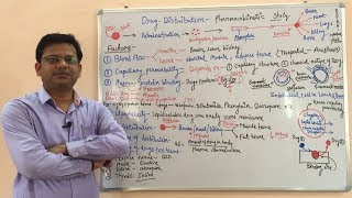 Pharmacokinetic (Part-02) Distribution of Drug- (HINDI) By Solution Pharmacy