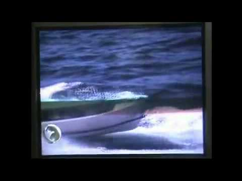 Indonesian navy killed somalian pirates