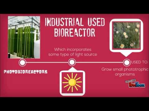 Introduction of Bioreactor