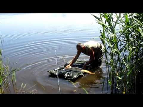 платная рыбалка в браславе на