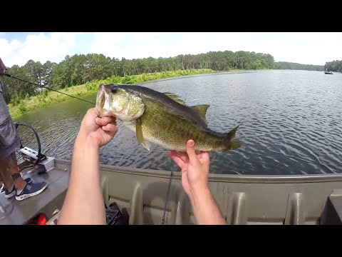 Lake jackson fishing videos for Lake jackson fishing report