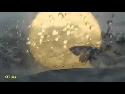 Кашин Павел - Мотылёк и свет