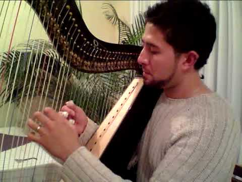 Celso Duarte playing Fantasia X by Alonso Mudarra (XVI Century)