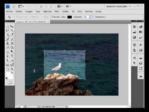 herramienta recortar photoshop cs4 videotutoriales.es