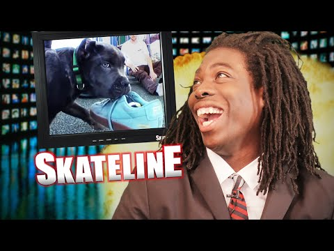 SKATELINE - King Puppy, Paul Hart & Mickey Papa Go Pro, Daewon Song