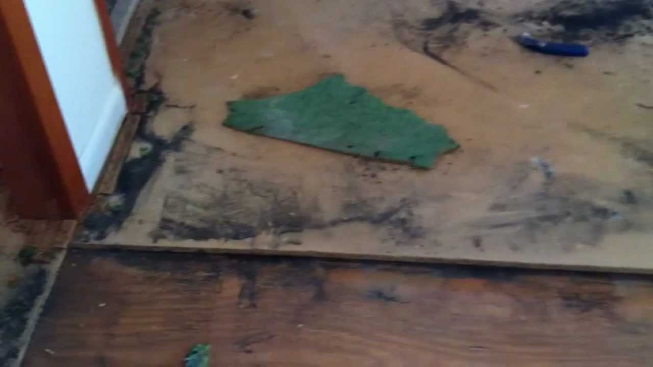 Particle Board Removal Before Hardwood Flooring