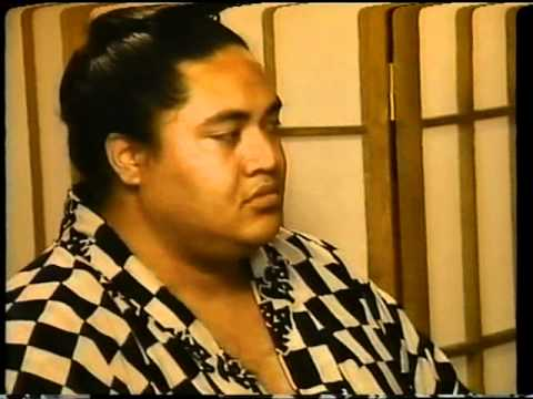 Yokozuna - Cooking for the single man