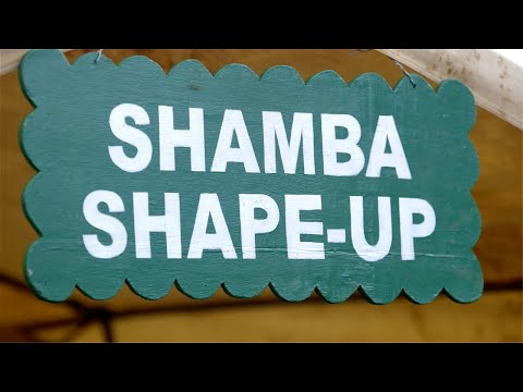 Shamba Shape Up (Swahili) - Cow Care, Irrigation, Bees Thumbnail